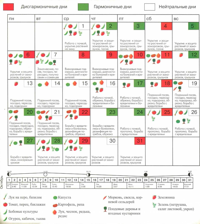 Лунный посевной календарь огородника на 2018 год по месяцам