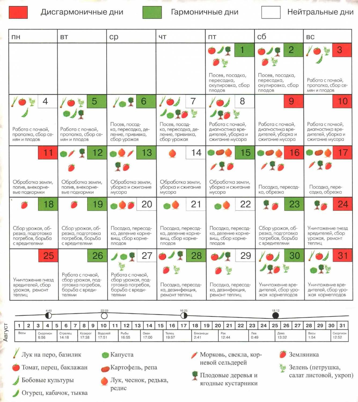Когда сажать чеснок под зиму в 2017 году по лунному календарю?