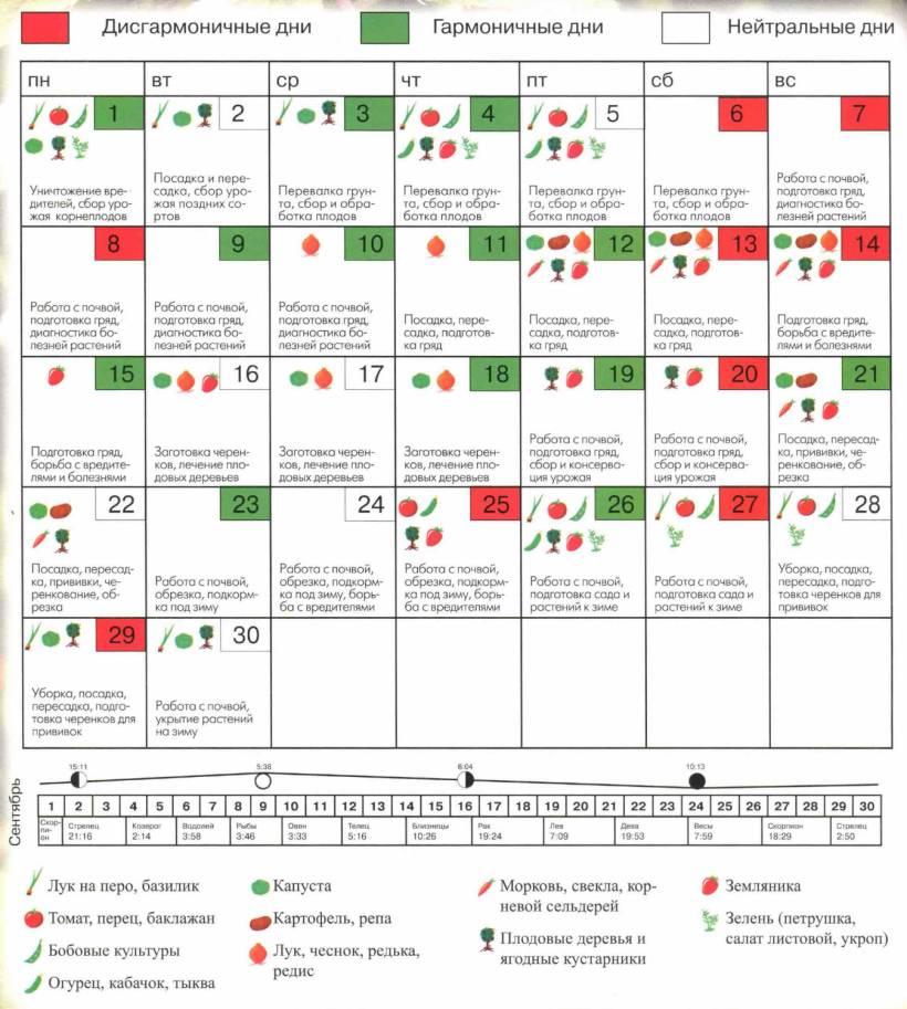 Точный лунные календари