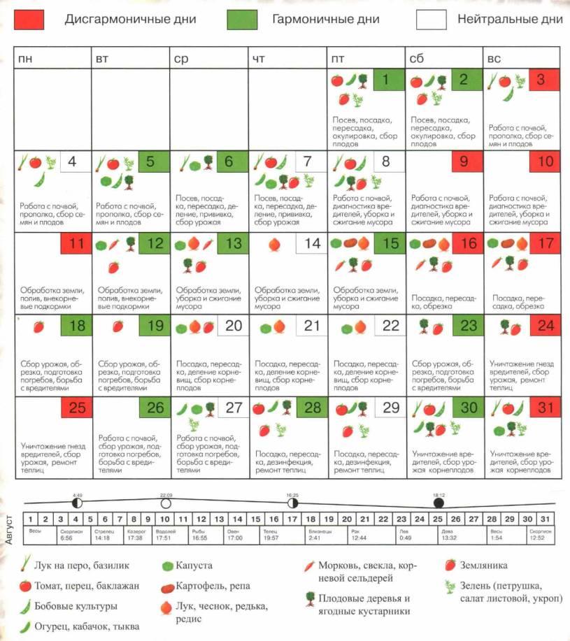Календарь игр мадридского реала